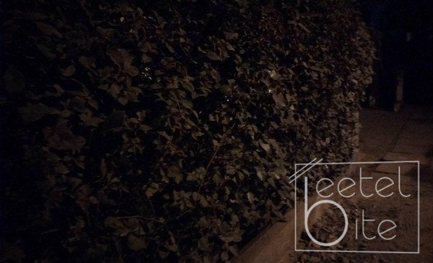Zenfone 4 Selfie Pro CameraLowLight